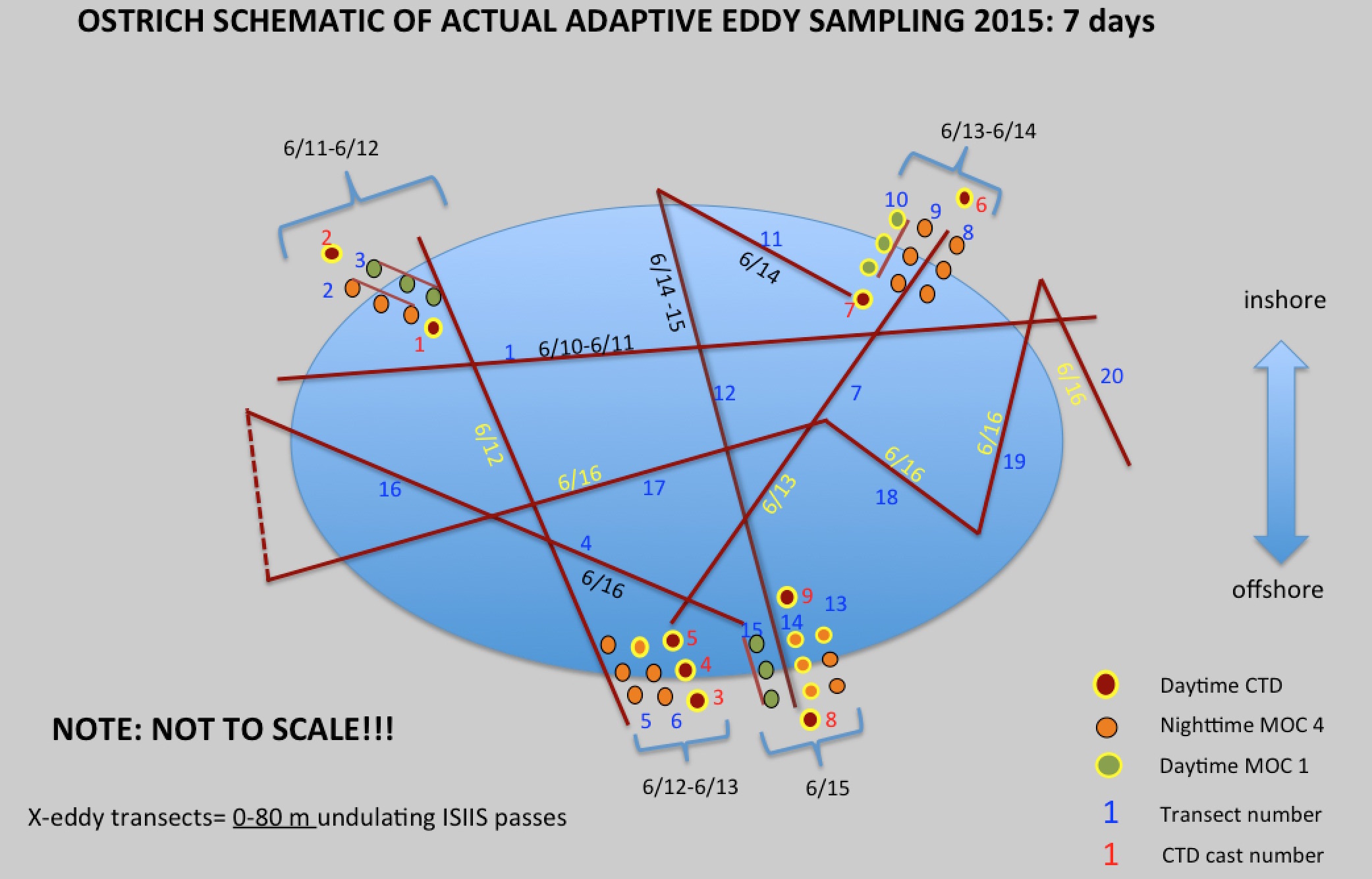 Eddy sampling schematic