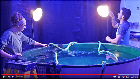 Two people stand around a large water tank adjusting large lamps and props for a photo shoot.