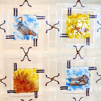 Glass Quilt squares depict marine life