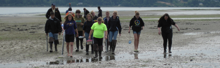 Marching across the mud flat