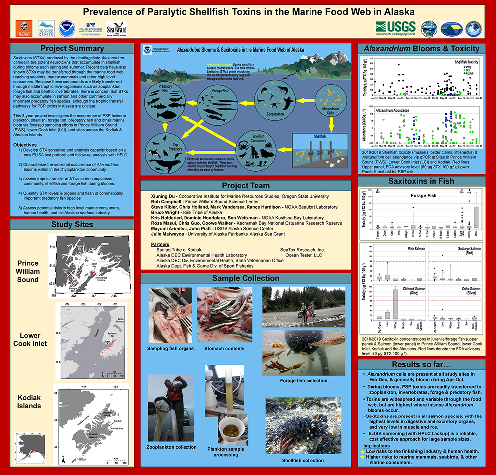 Research poster on the prevalence of paralytic shellfish toxin in the marine food web in Alaska.