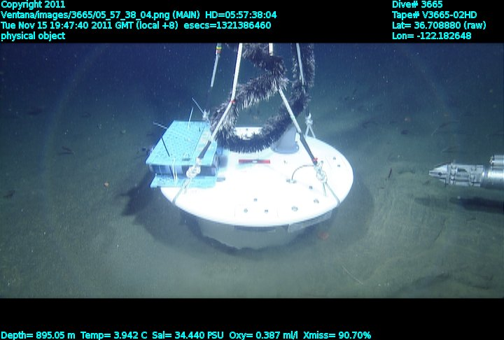 BMFC in Monterey Bay at 900 m