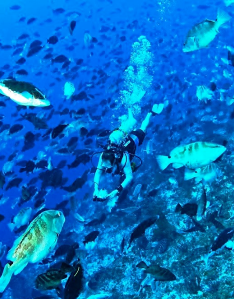 Scott Heppell diving among grouper