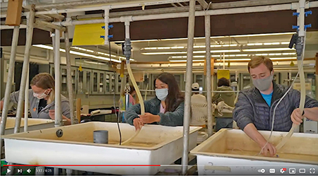 Three collge students wearing masks work at large sinks in a research labrartory at HMSC.