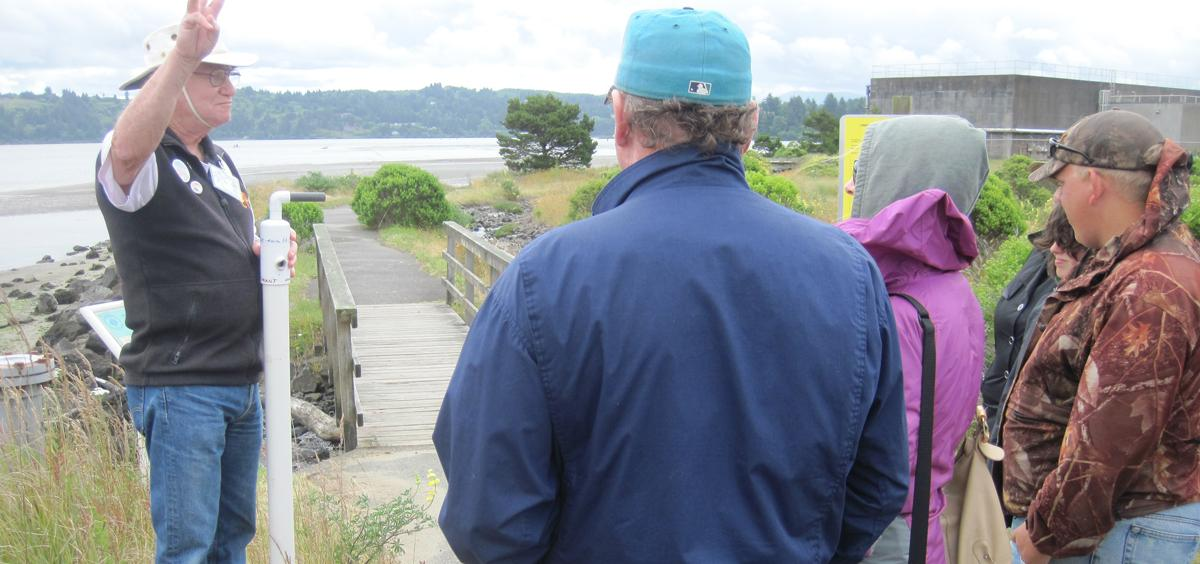 Guided Estuary Walk