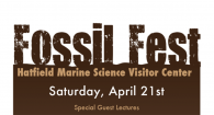 A flyer promoting the annual Fossil Fest at Hatfield Marine Science Visitor Center