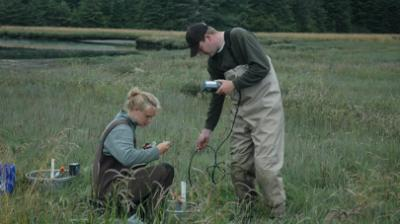 A man and woman in a salt marsh doing field research