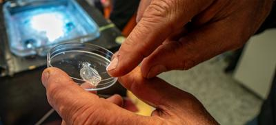 hands holding a petri dish with plankton sample