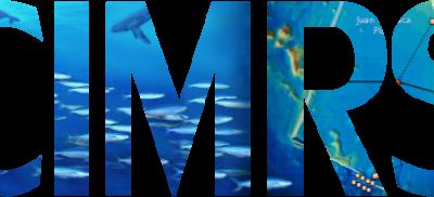 CIMRS Logo