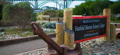 A large anchor sits next to the sign for Hatfield Visitor Center