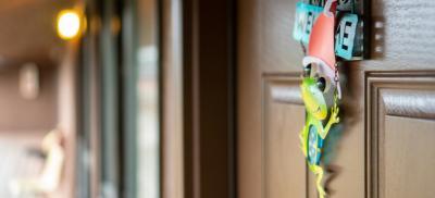 The entrance door to a Hatfield dorm room. A metal frog decoration hangs from the door.